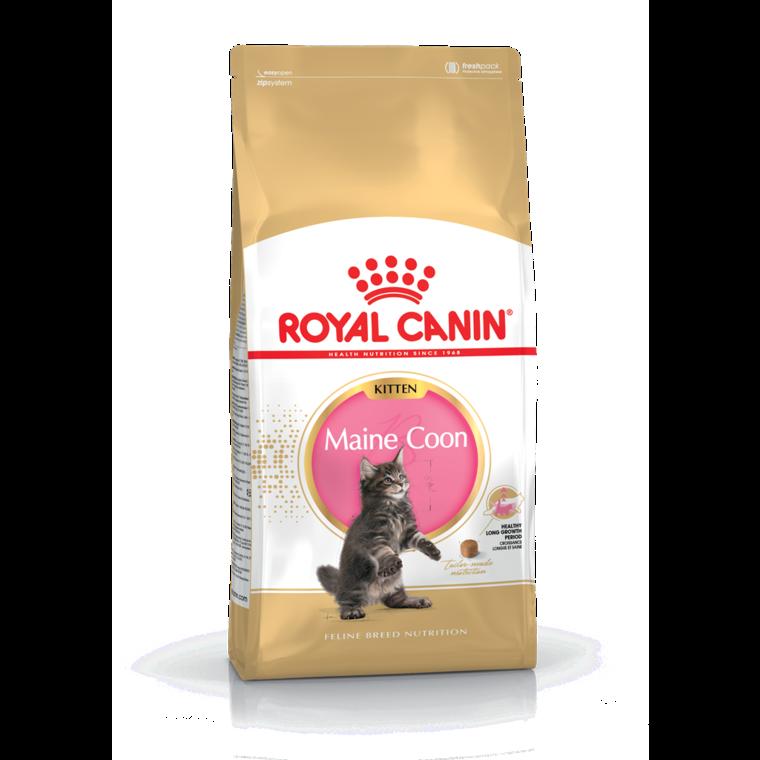 Maine Coon Kitten croquettes chatons et chattes en gestation sac 2 kg 204300