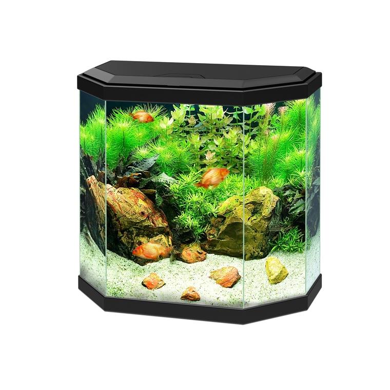 Aquarium noir 30 avec LED 40 x 20 x 40cm 23030