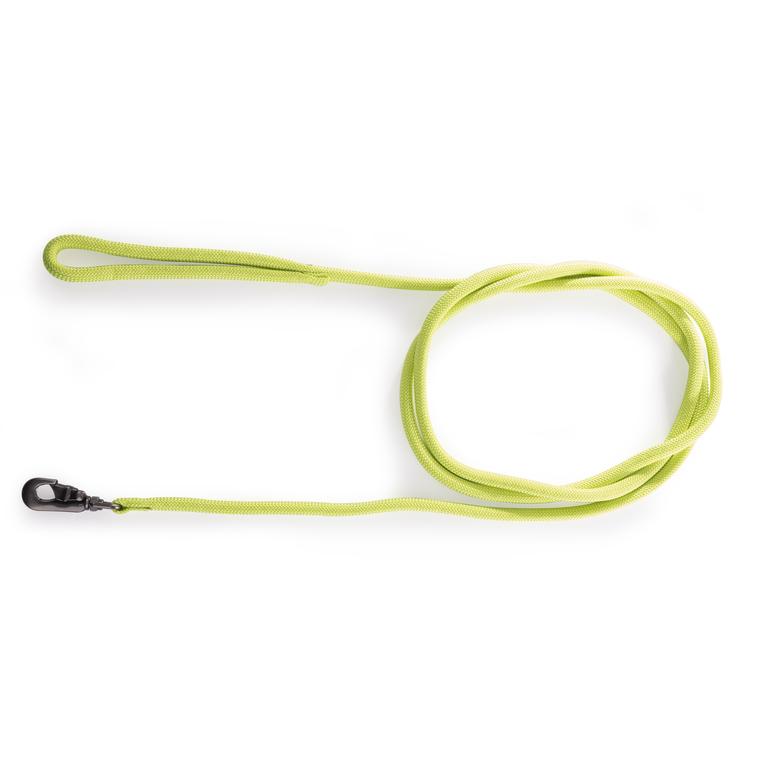 Longe ronde pour chien coloris vert citron 1,3 cm x 3 m 232082