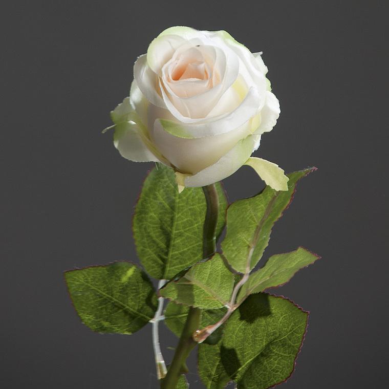 Fleur artificielle Rose brésil beige 233733