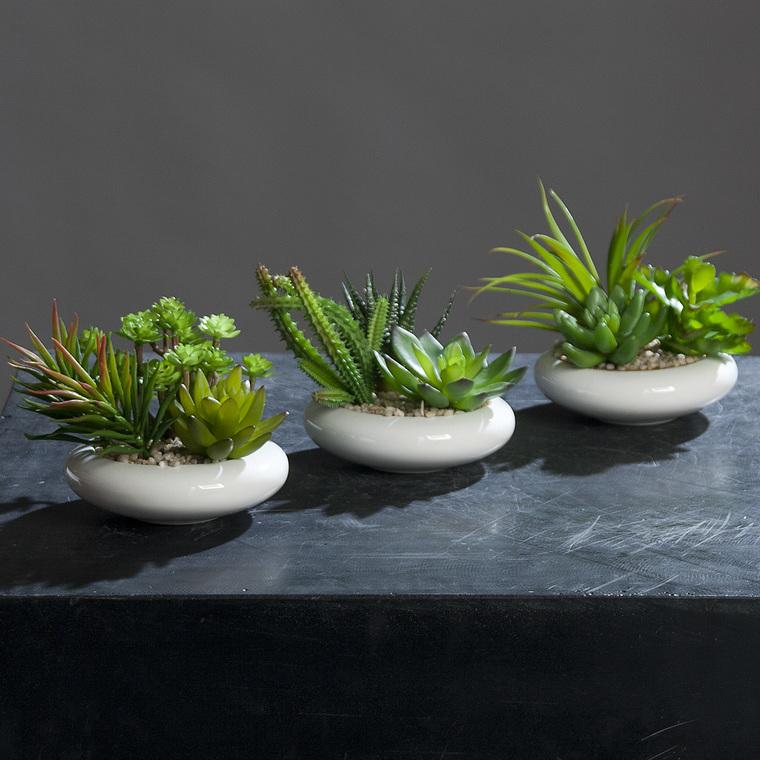 Succulentes artificielles coupe ronde 233806