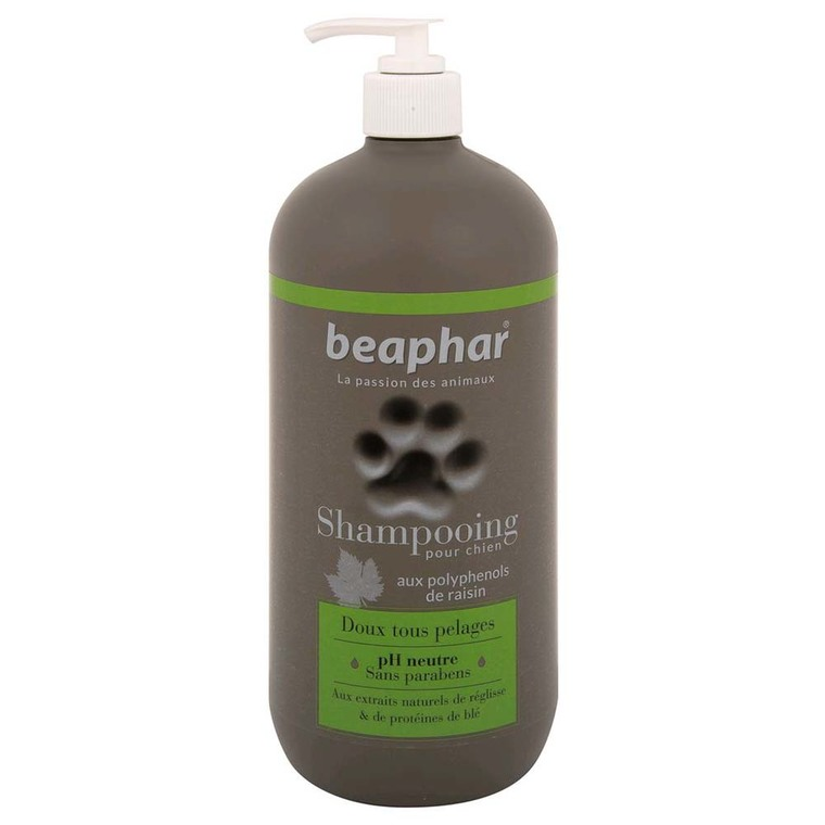 Shampoing Premium tous pelages chien 750 ml 233953