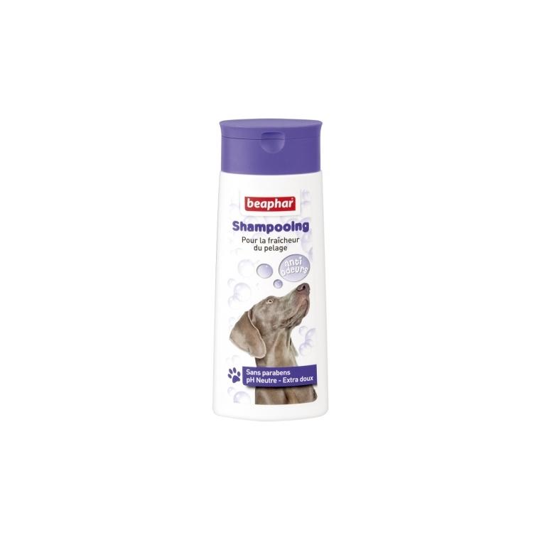 Shampoing Bulles Anti-odeurs 250 ml