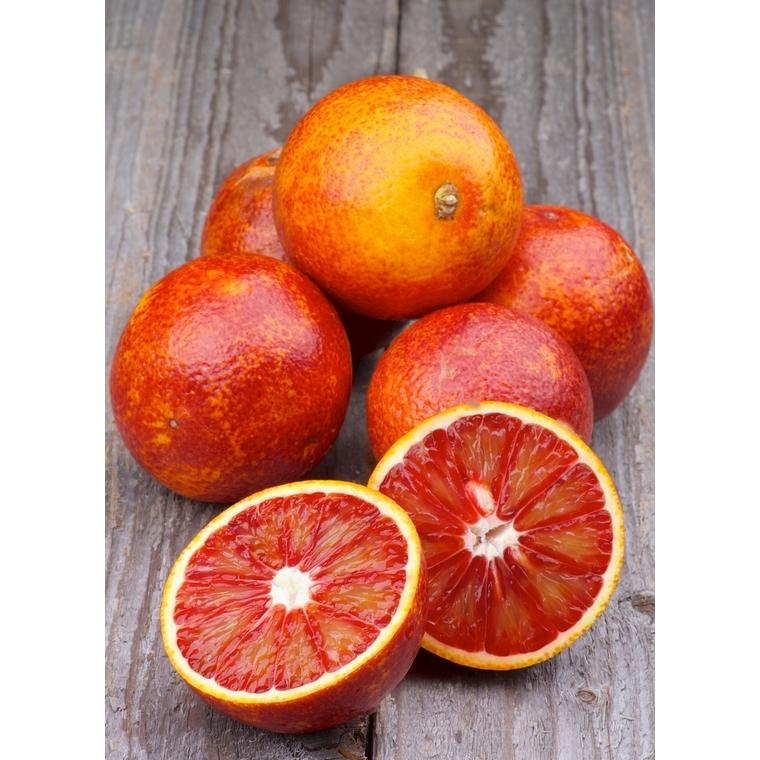 Orange sanguine Tarocco bio - Prix au kg 242570