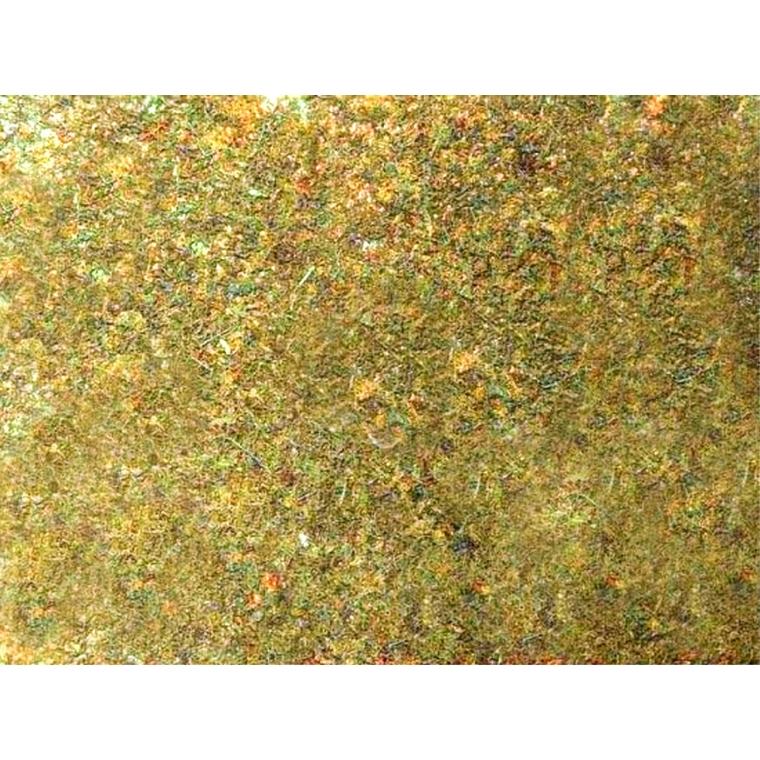 Feuille de mousse - 70x50 246546