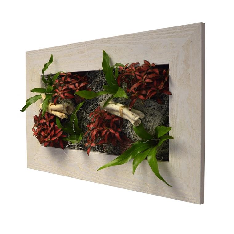 Cadre végétal M vieux bois blanchi avec 8 plantes 31x58x15 cm