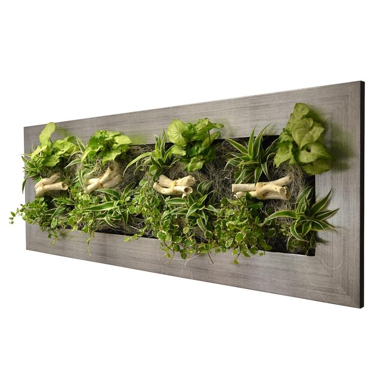 Cadre végétal L alu brossé avec 16 plantes 31x92x15 cm