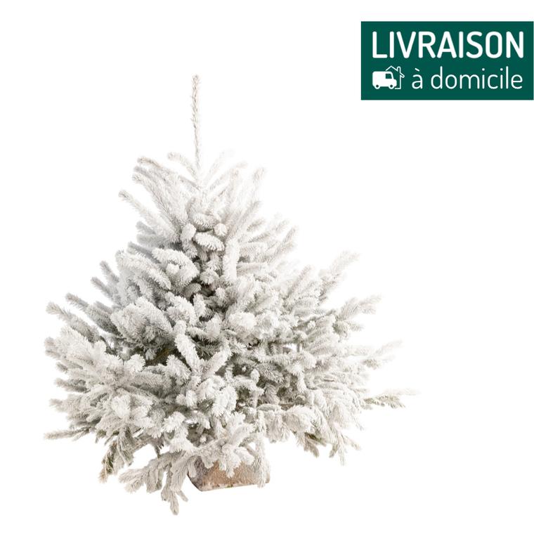 Sapin naturel Diamant Robin® blanc effet enneigé 110/125 cm 258152