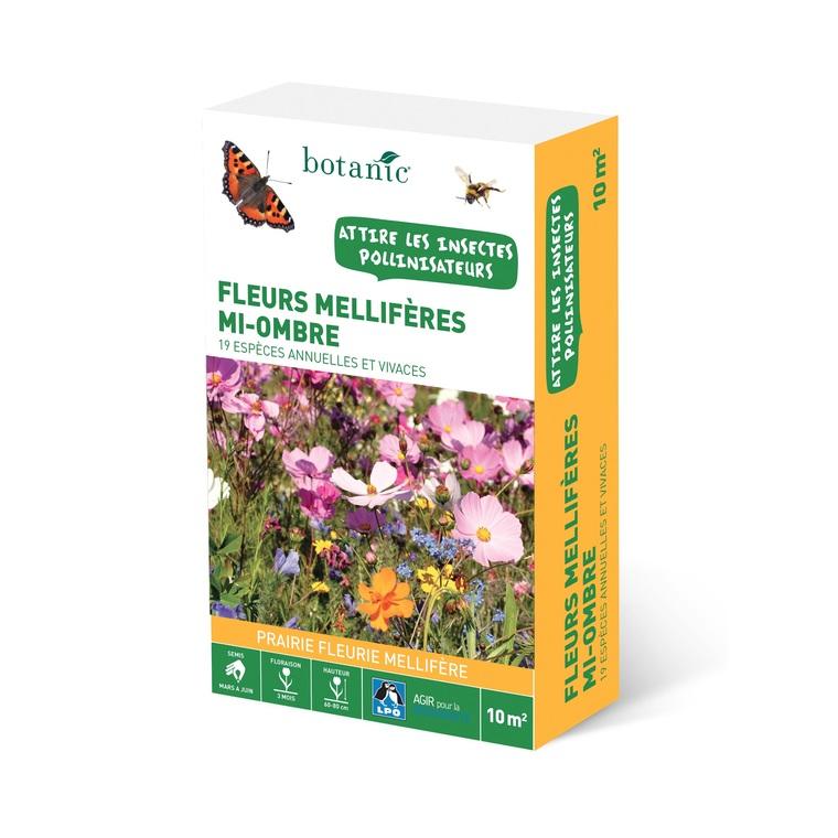 Fleurs mellifères mi-ombre 260140