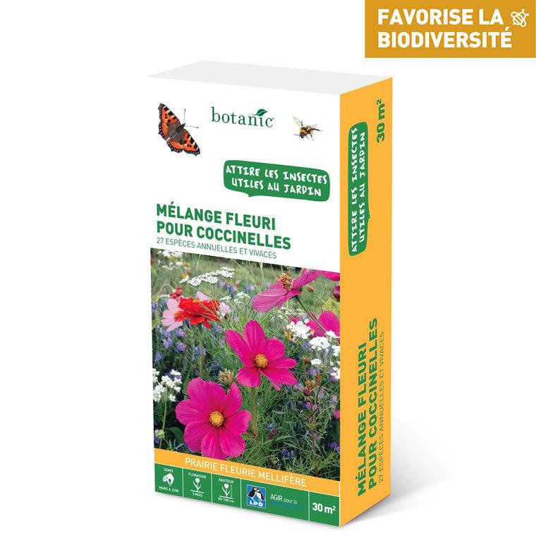 Mélange fleuri pour coccinelles 260148