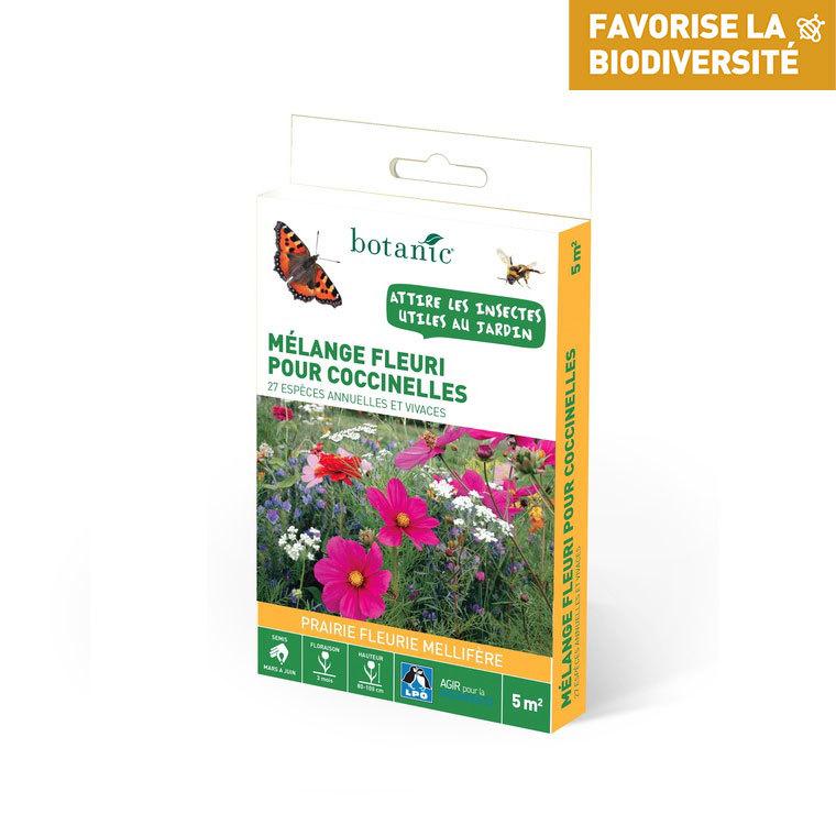 Mélange fleuri pour papillons 260176