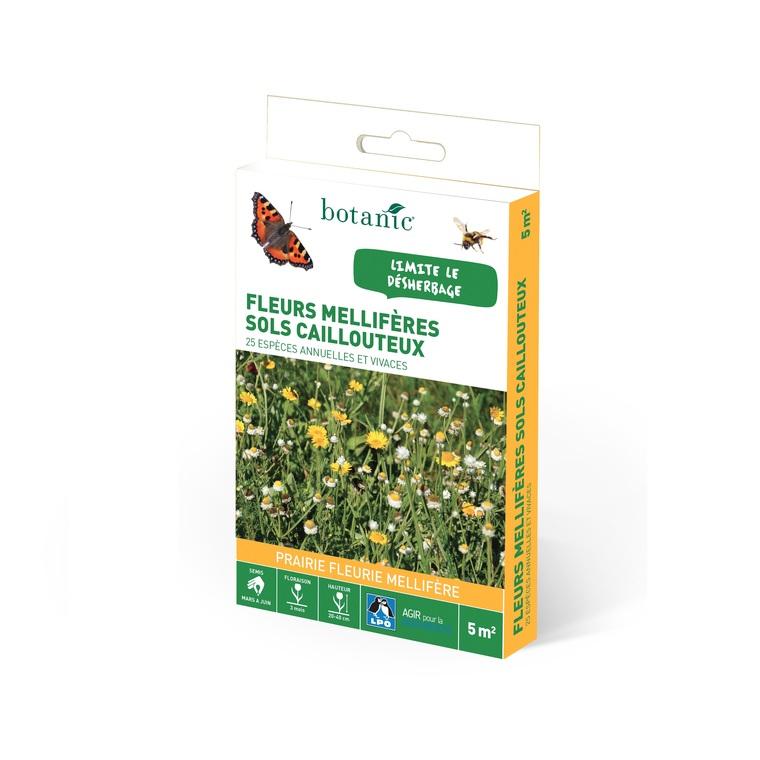 Fleurs mellifères sols caillouteux 260182