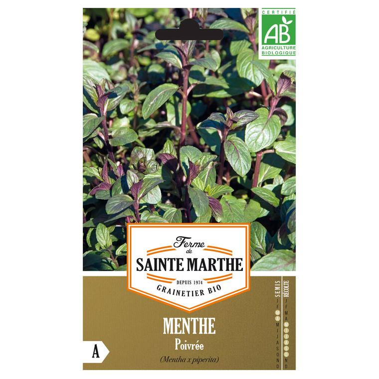Menthe Poivrée 260652
