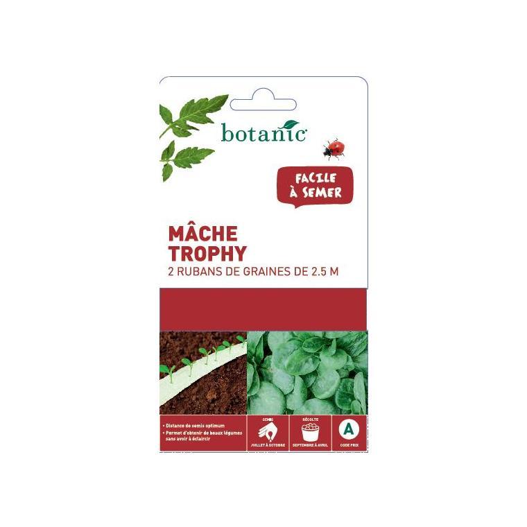 Ruban  mâche Trophy 260755