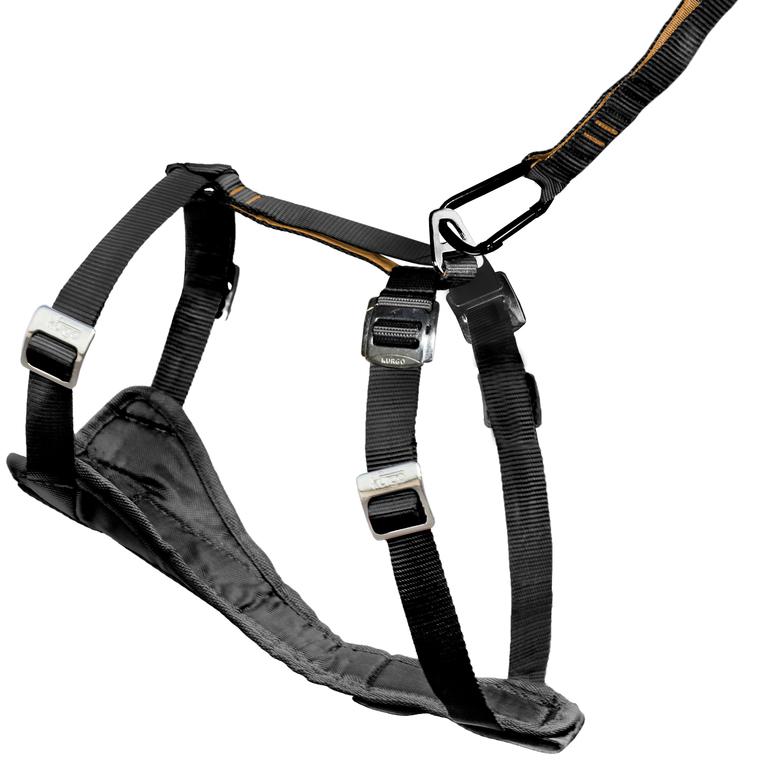 Harnais pour chien enhanced tru-fit taille smart S 261012