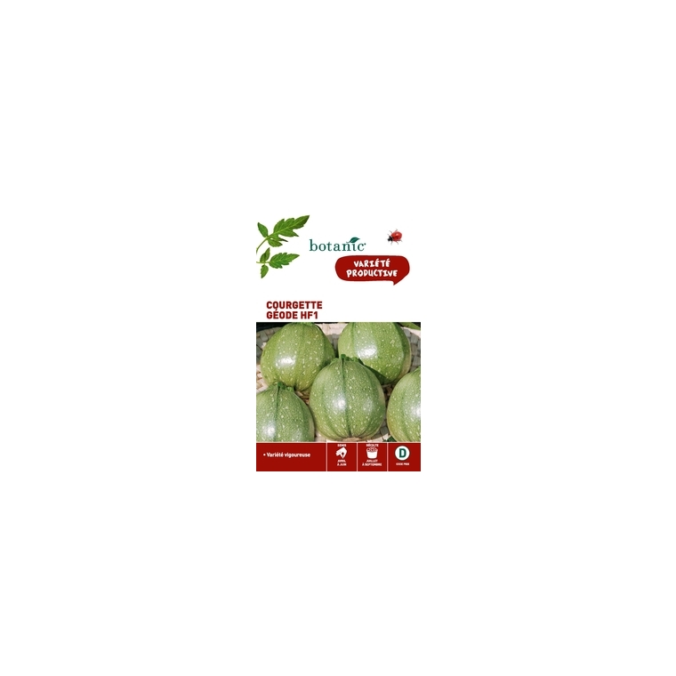 Courgette geode hybride f1 x2 sachets