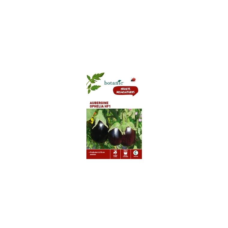 Aubergine ophelia hybride f1 Insolite x2 sachets