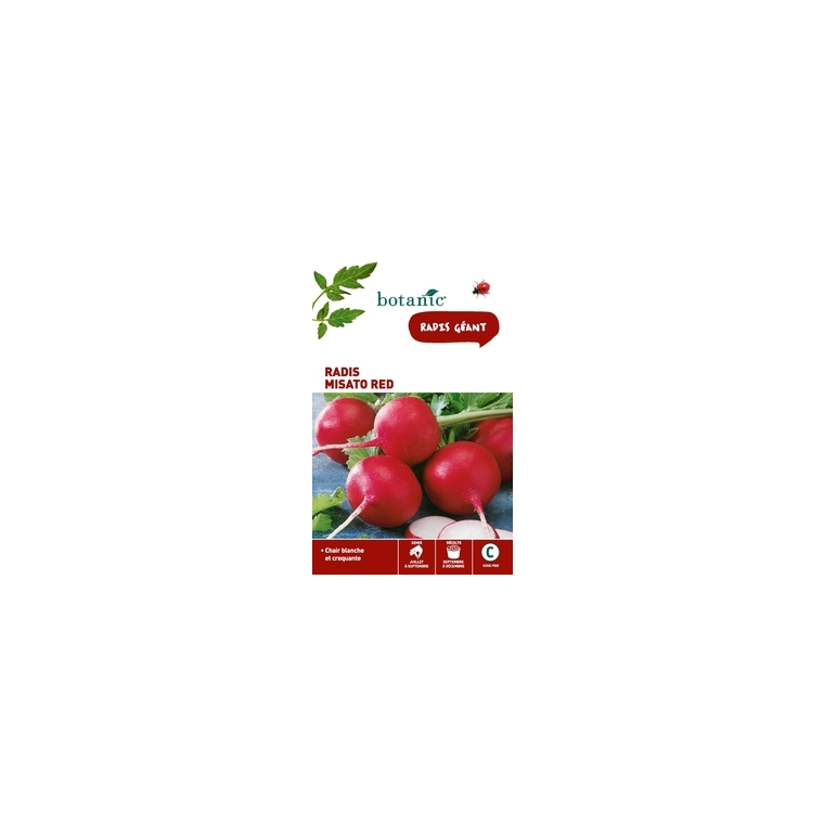 Radis Misato Red 261288
