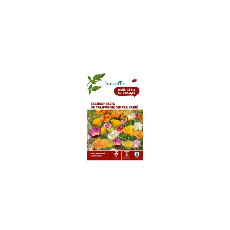 Eschscholzia de Californie simple variée x 2 sachets 261327