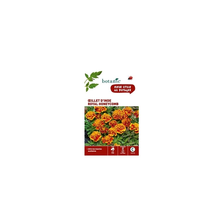 Œillet d'Inde royal Honeycomb 261334