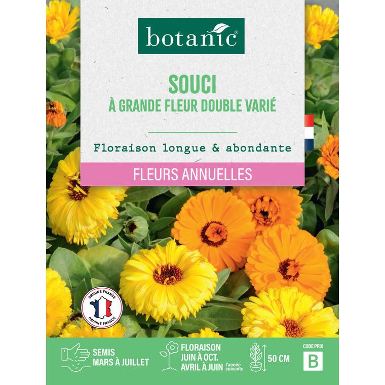 Souci à grande fleur double varié en sachet 261339