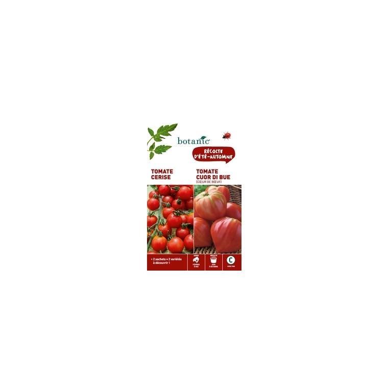 Tomate cerise rouge  +  tomate cuor di bue (cœur de bœuf) Duo potagere 261359