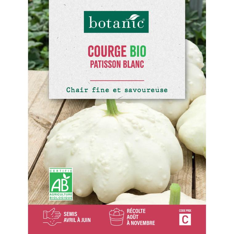 Courgette patisson blanc bio BIO 261388