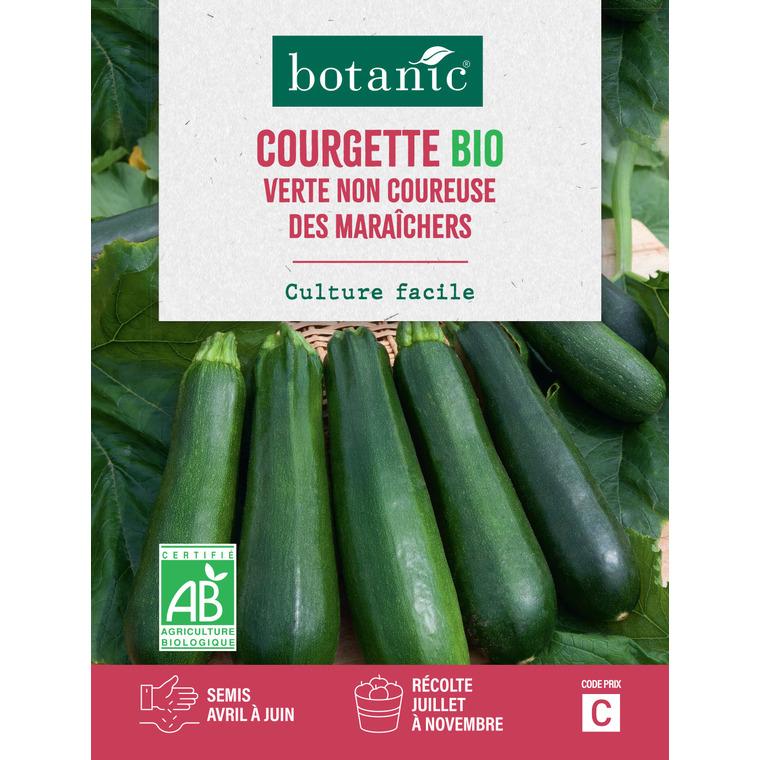 Courgette Verte Non Coureuse des Maraîchers AB Bio 261389