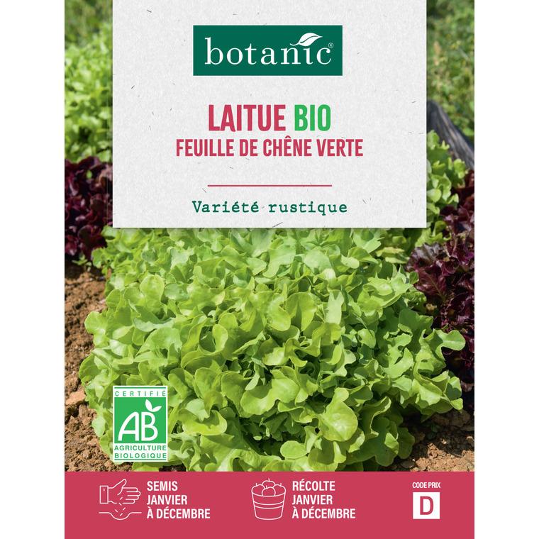 Laitue Feuille de Chêne Verte AB BIO 261399
