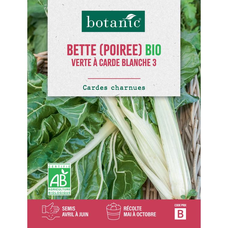 Poirée Verte à Carde Blanche 3 AB BIO 261421