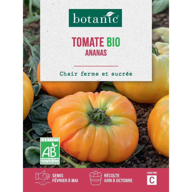 Tomate Pineappleananas AB BIO 261440