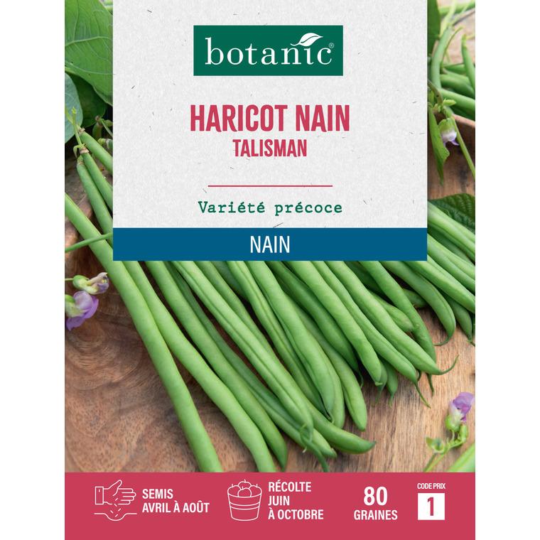 Haricot nain talisman extra-fin sans fil 80 Graines 261468