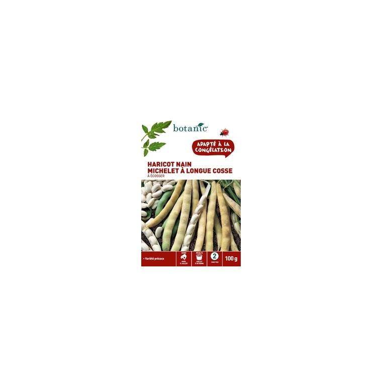 Haricot nain michelet a longue cosse a ecosser 100 gr