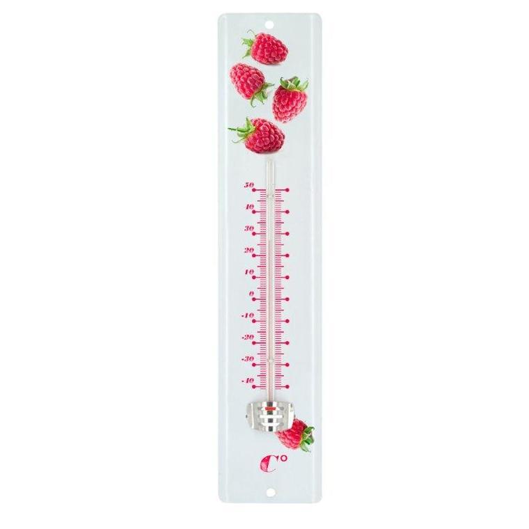 Thermomètre 8026 tôle peinte 30 cm framboises 262207