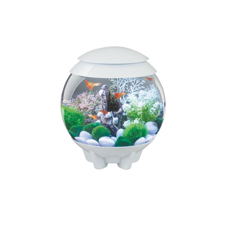 Aquarium BiOrb 15 L blanc avec éclairage multicolore 262316