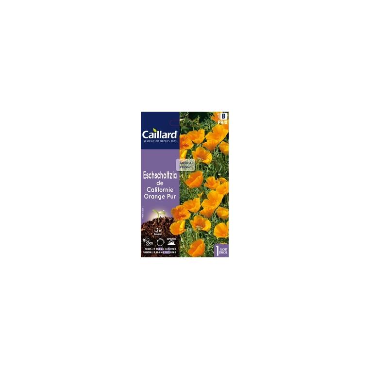 Eschscholzia de Californie orange pur en sachet 263097