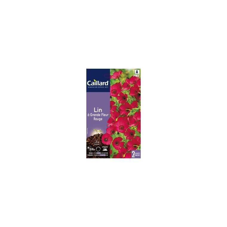 Lin à grande fleur rouge en sachet 263121