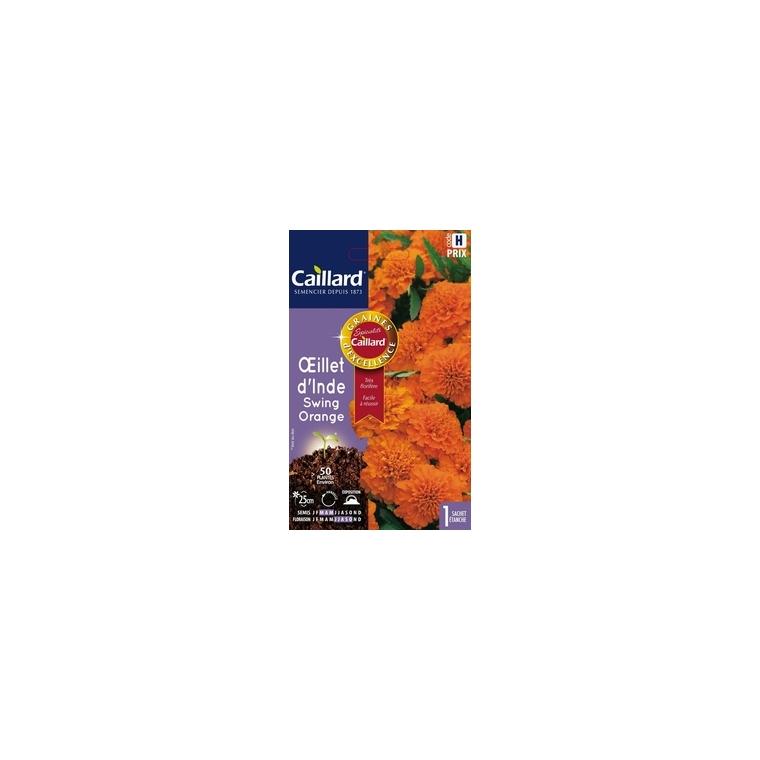 Œillet d'Inde Swing Orange en sachet 263150