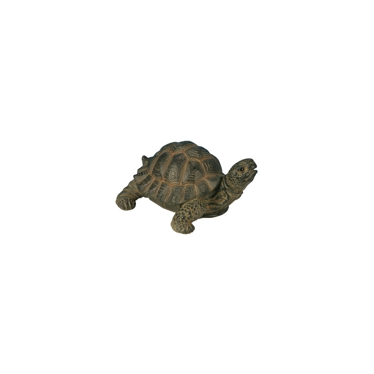 Tortue marron 24 cm