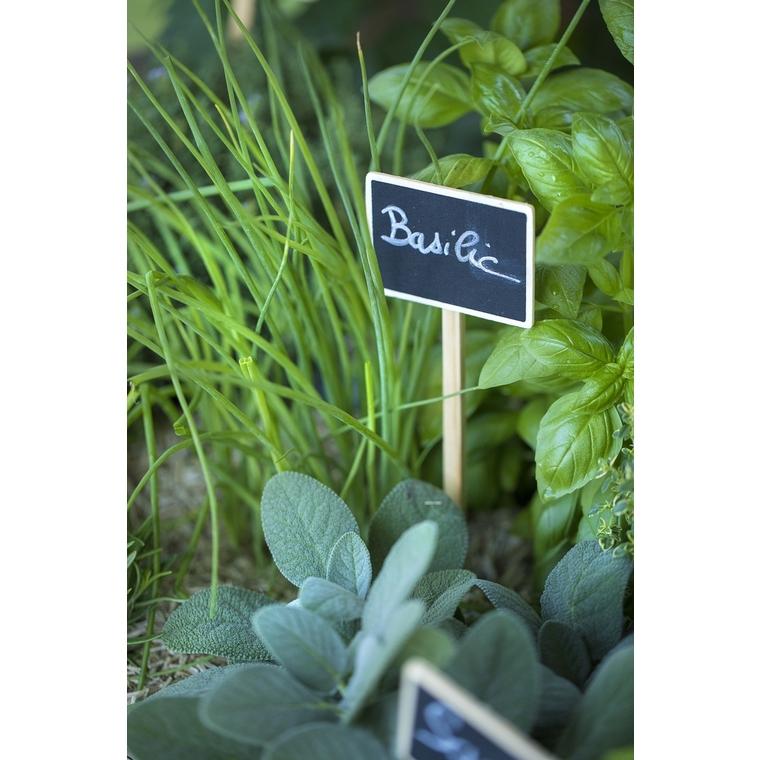 Etiquette a planter 273697
