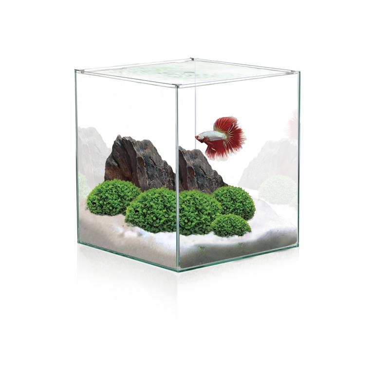 Aquarium en forme de cube 10 L 275786