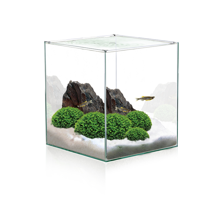 Aquarium en forme de cube 18 L 275787