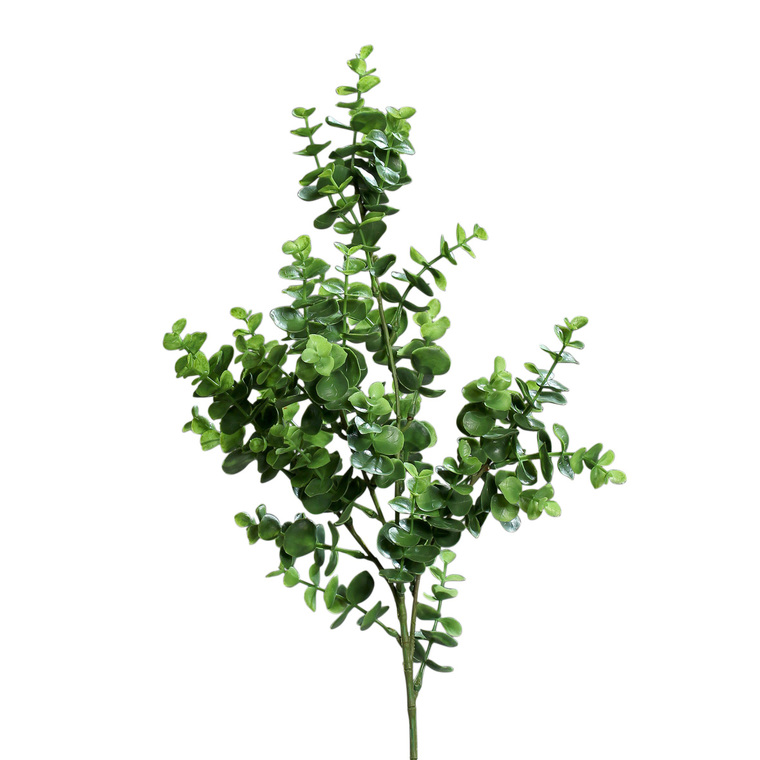 Branche eucalyptus artificiel H70 cm 279550
