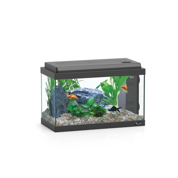 Aquarium aqua 60 bio noir avec LED 60 x 30 x 34 cm 280826