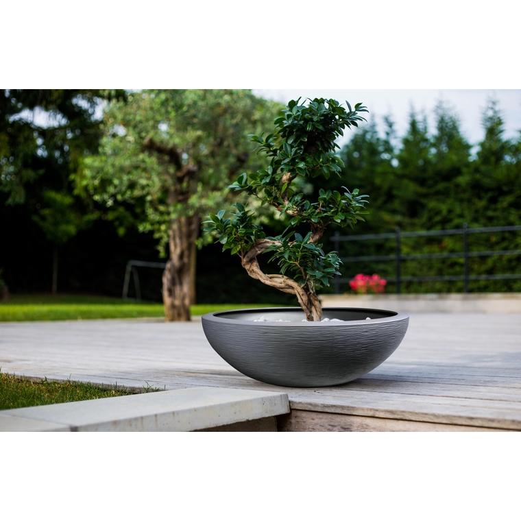 Vasque Graphit Anthracite - D59 x H21 : Pots et contenants plantes ...