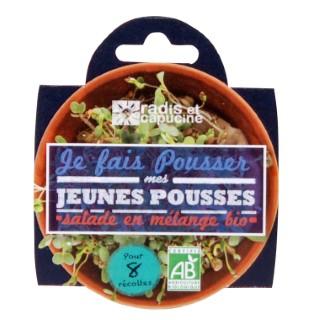 Coupelle Jeunes Pousses salade en mélange Bio 310118