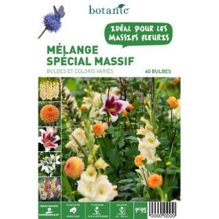 40 bulbes de Mélange spécial Massif – Couleurs Variées 310356
