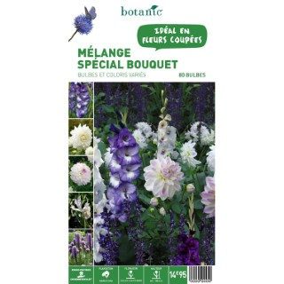 Mélange spécial Bouquet - Variés - 80 bulbes 310360