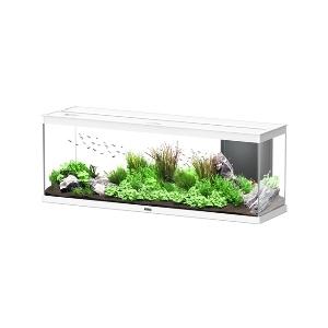 Aquarium style LED avec contours blancs 120 x 40 x 45 cm 310522