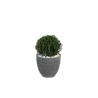 Petit pot rond Echo gris foncé 21,7 L 311497